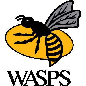 Team: wasps
