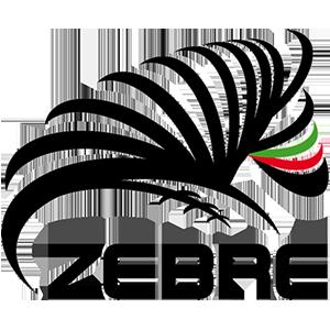 Team: Zebre