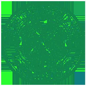 Team: celtic_fc